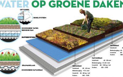 Water op groene daken