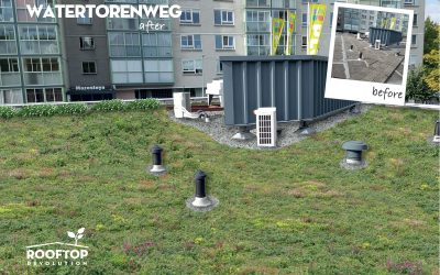 Dak uitgelicht: Watertorenweg in Rotterdam