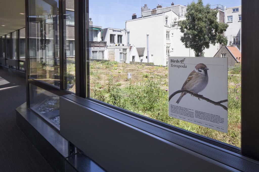 Conscious Hotel Vondelpark - De Dakdokters