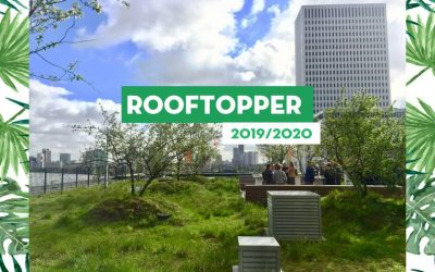 Rooftop Awards 2019/2020