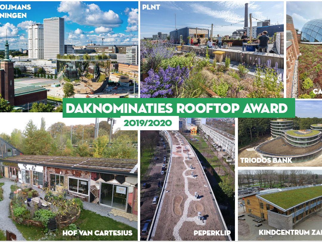 Daknominaties Rooftop Award 2019/2020