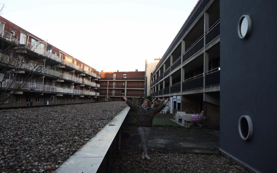 De dakdroom van Mirjam